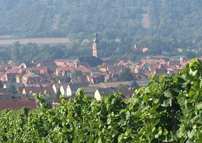 Blick auf Eibelstadt